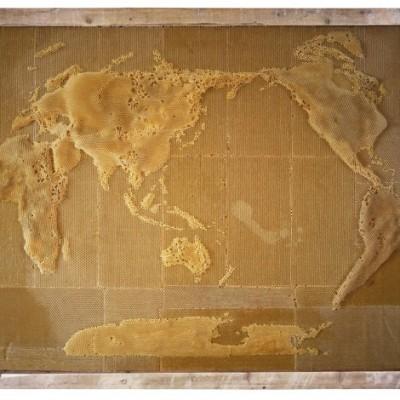 honeycomb-map